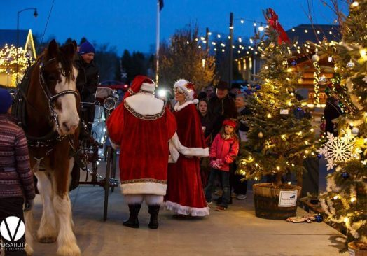 Carriage Rides in Downtown Castle Rock